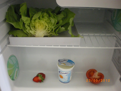 Beginn_23_05_2012_Fridge-Fresh