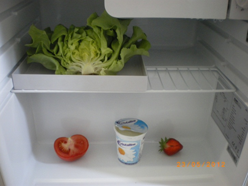 Beginn_23_05_2012_OHNE_Fridge-Fresh