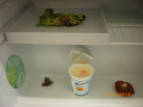 Ende_23_05_2012_Fridge-Fresh